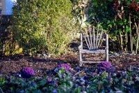 fotel w ogrodzie